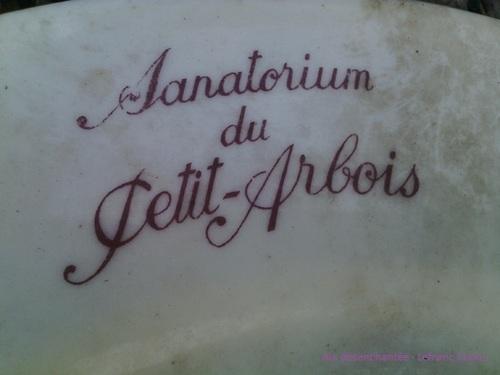 RELIQUES DU SANOTORIUM DU PETITS-ARBOIS