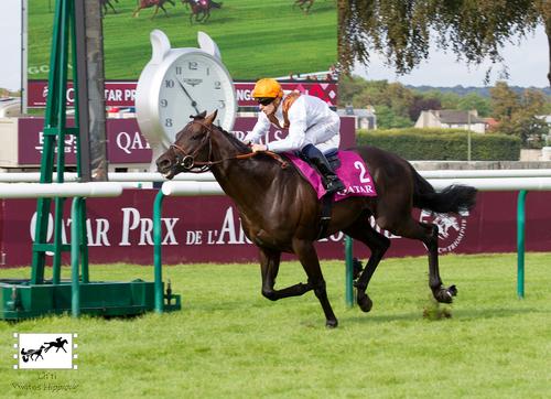 Qatar Prix du Moulin de Longchamp