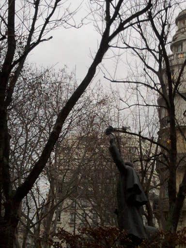 Paris statue pigeon