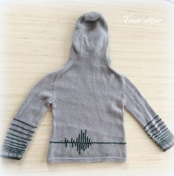 Pull garçon Richter sweater