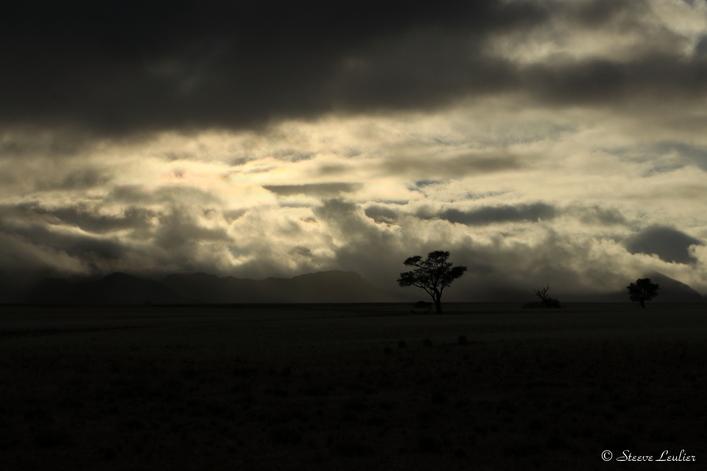 Erg du Namib, la dune Elim