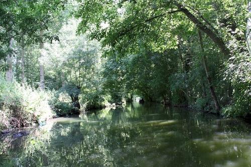 Les canaux du marais poitevin.