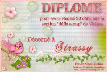 DIPLOMES