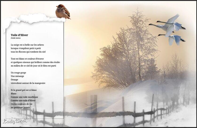 L'hiver de Nadou