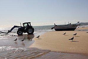 Monte-Gordo-praia-Adam---Eve-001--48-.JPG