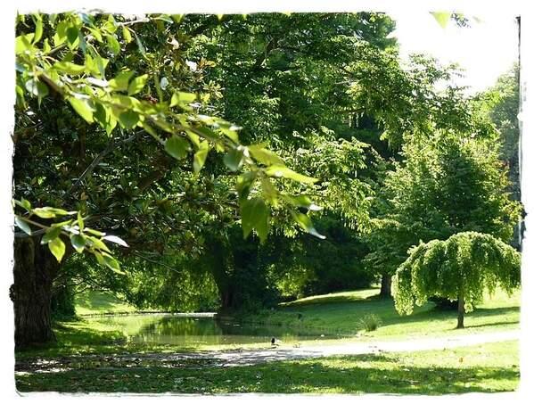 Borély parc (10)bis