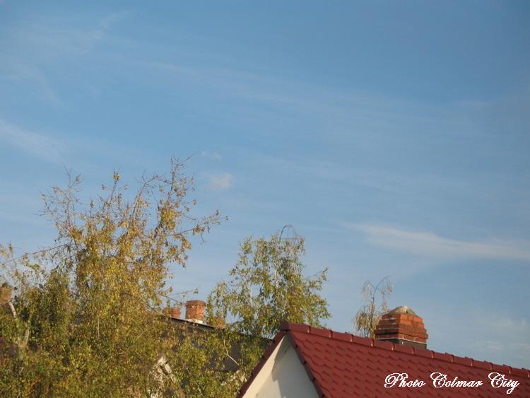 Ciel d'Alsace 186