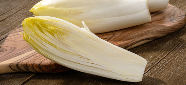 endive-chicon-legume-bienfaits-05