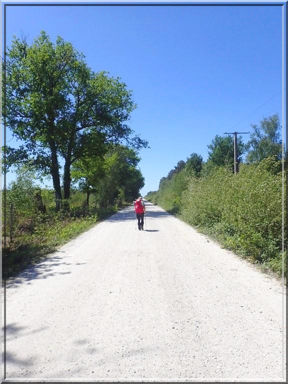 916 - Suite17 : -Notre Chemin vers St Jacques de Compostelle à travers ses anecdotes-
