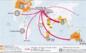 Croissance & mondialisation depuis le milieu du XIXeme siècle