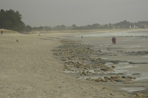 Dunes du Treustel : 2 janvier 2014