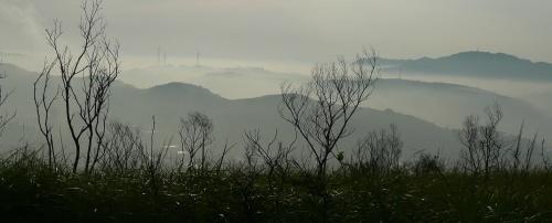 Morning light on the South Ridge #18