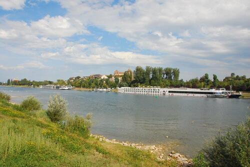 Le Rhin à Breisach Am Rhein