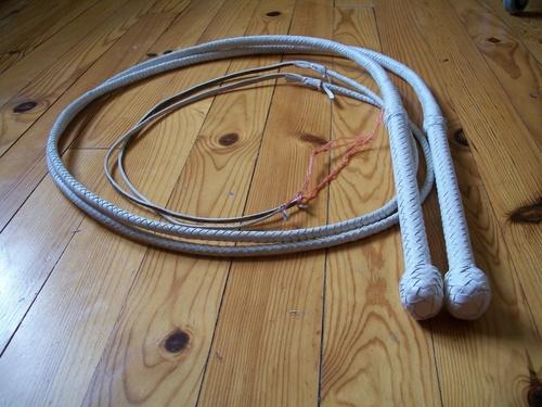 White pair of light bullwhips