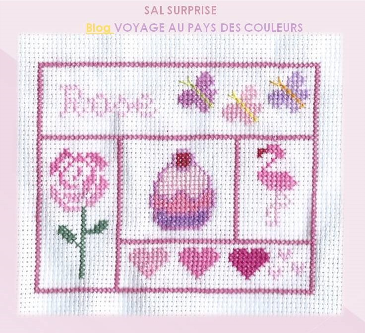 "Sal Surprise ""couleurs"""