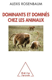 Lecture scientifique : la dominance chez les animaux