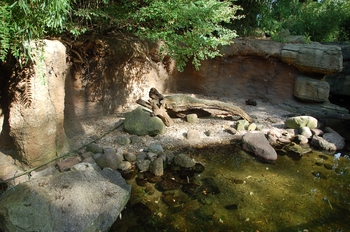 dierenpark emmen d50 100