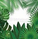 Galerie des plantes