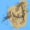 cheval galop traits.png