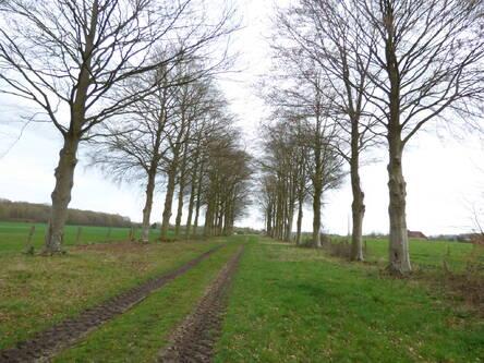 Entre Bosnormand et Le Thuit-Simer