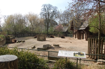 zoo cologne d50 2012 178