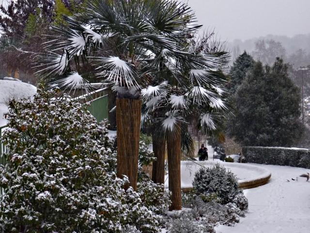 Metz en hiver 11 22 12 09