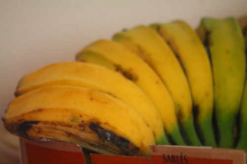gratin de bananes jaune légume Benedetta à tival
