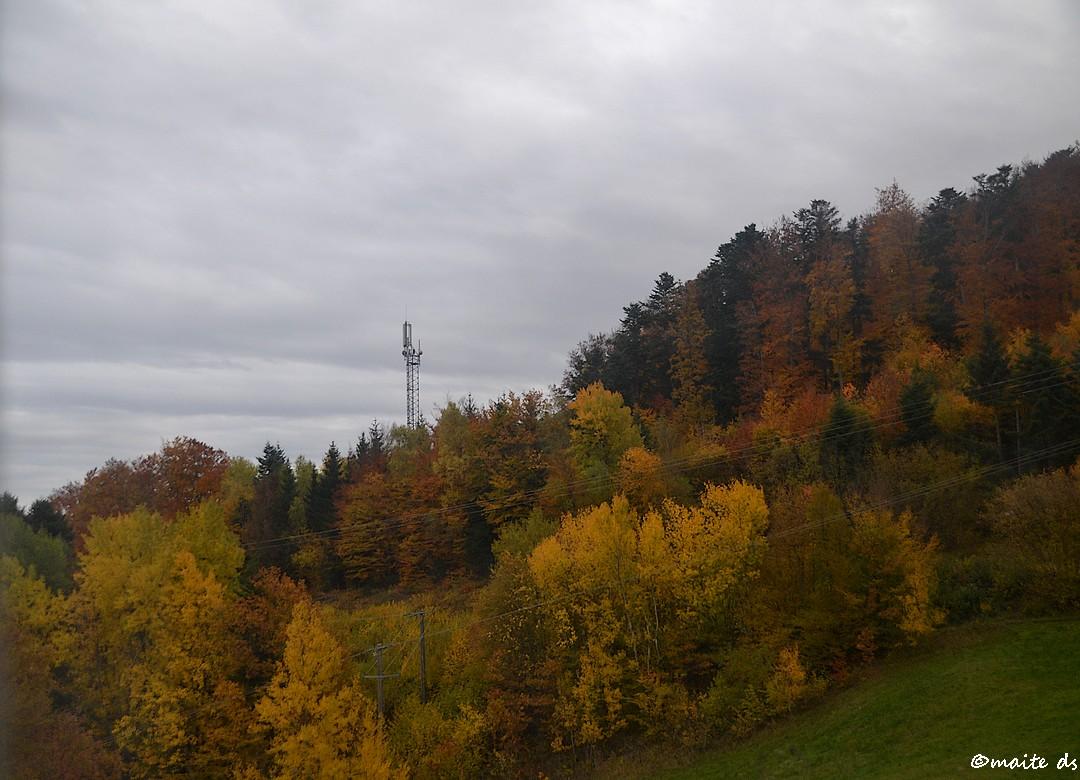 Bourbach le Haut - Alsace - (1)