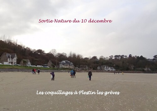 Nature-Sorties-2014-2015-page4