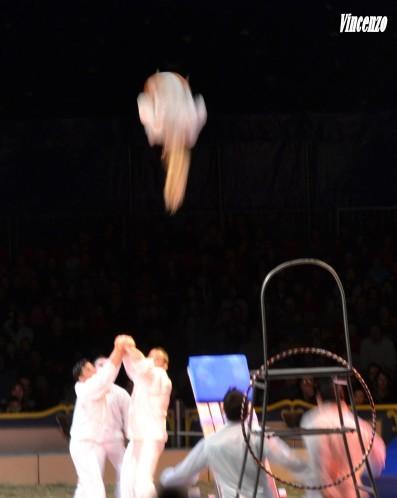 cirque saut acrobatique B