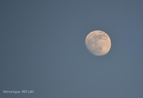 """""""Ballade à la lune"""" Alfred de Musset"""