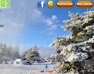 Jouer à Return to winter forest