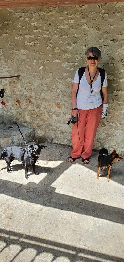 Patou, Lady et Ibis