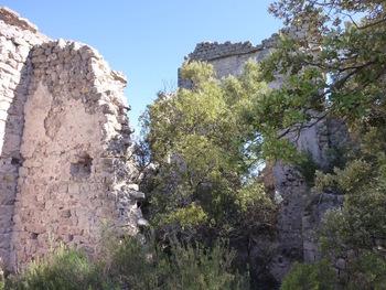 Au milieu des ruines