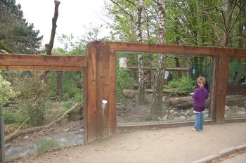 Zoo Osnabruck d50 2012 235