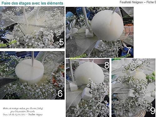 2012 01 03 feuillete neigeux (4)