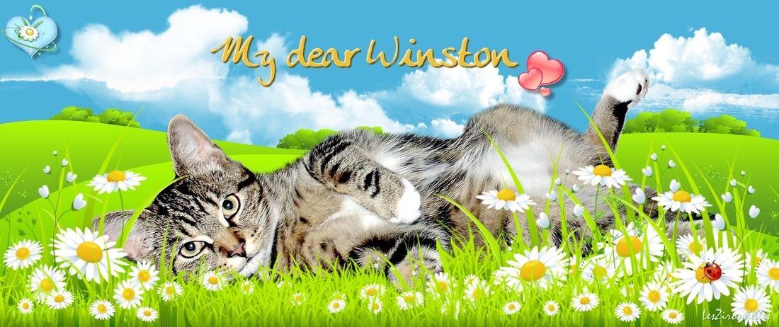My dear Winston