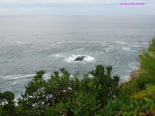 Biarritz : mes photos page 9