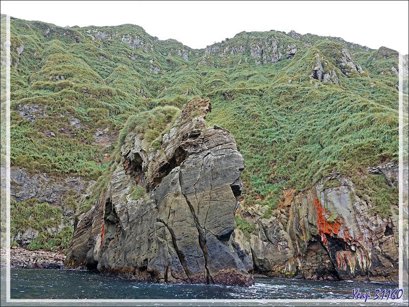 Quand la nature fait dans l'abstrait  : c'est un peu moins beau que les falaises et les grottes précédentes, mais c'est quand même très beau ! - Nightingale Island - Tristan da Cunha