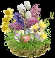 http://img-fotki.yandex.ru/get/6002/131624064.115/0_7e98e_2212666c_L.png