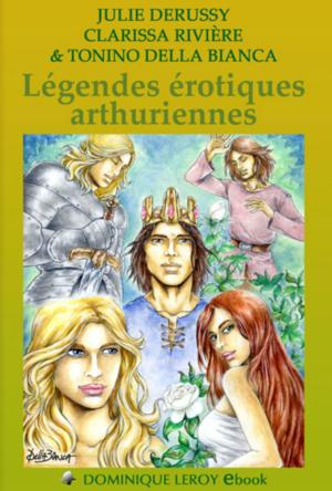Chronique du livre {Légendes érotiques Arthuriennes}