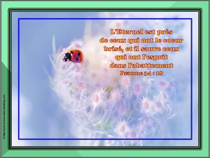 L'Eternel est près de ceux qui ont le coeur brisé - Psaume 34 : 18