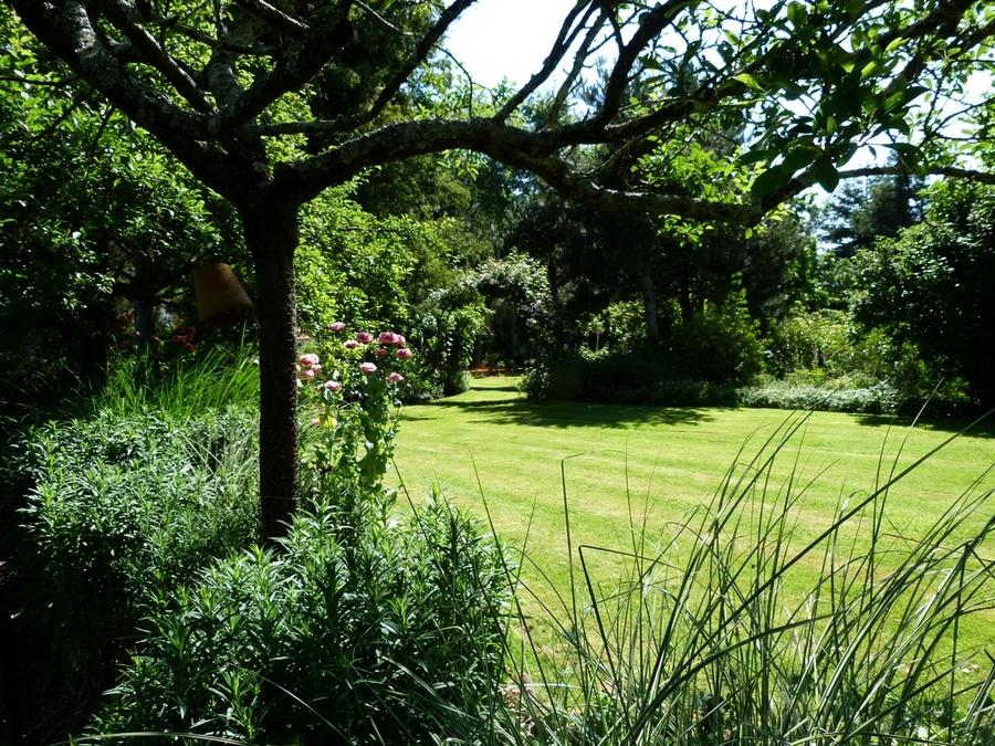 Au jardin chez Mary et Joël  ( 2 )