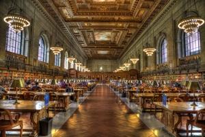 books new york public library books