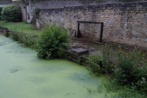 Calvados - Aubigny