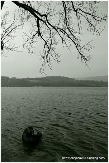 2014.03.19 Bois d'Amour, lac de Paladru (Isère, Rhone-Alpes)