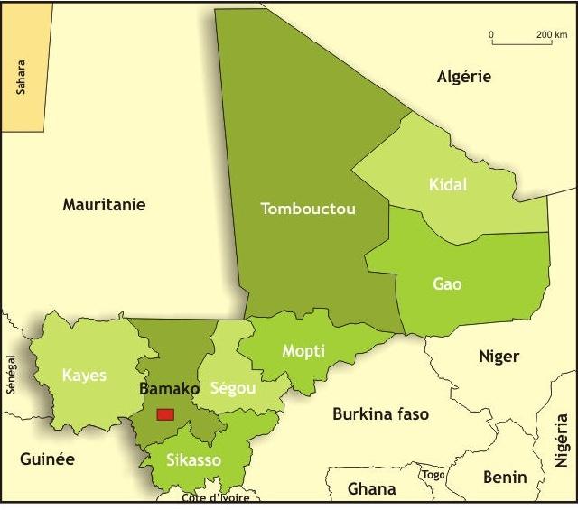 Mali: La SADI réclame un débat public sur la situation dans le nord