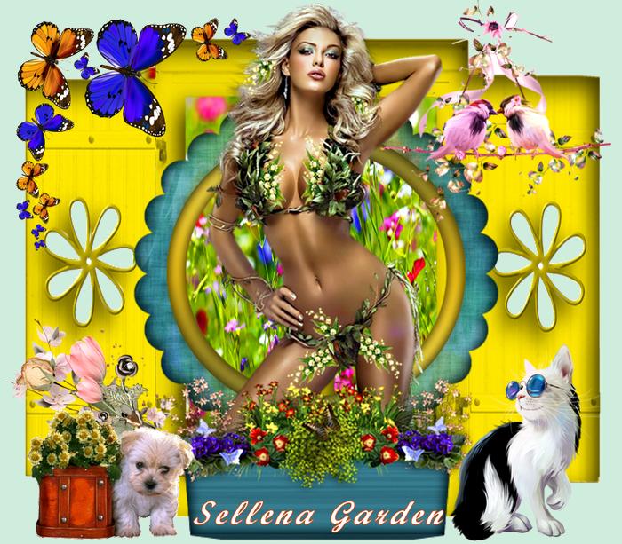 15 - sellena garden