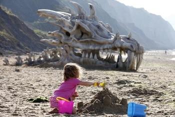crane-de-dragon-plage--640x426