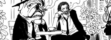 One Piece Chapitre 789 en Version Anglaise